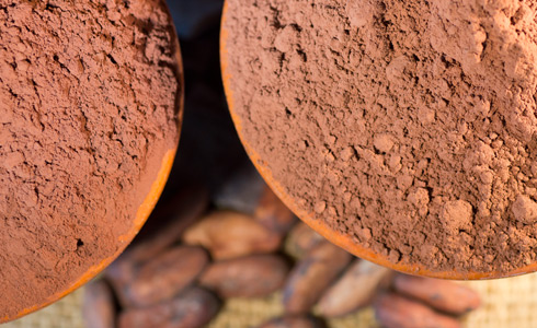 Dutch Cocoa SQL Data Writer